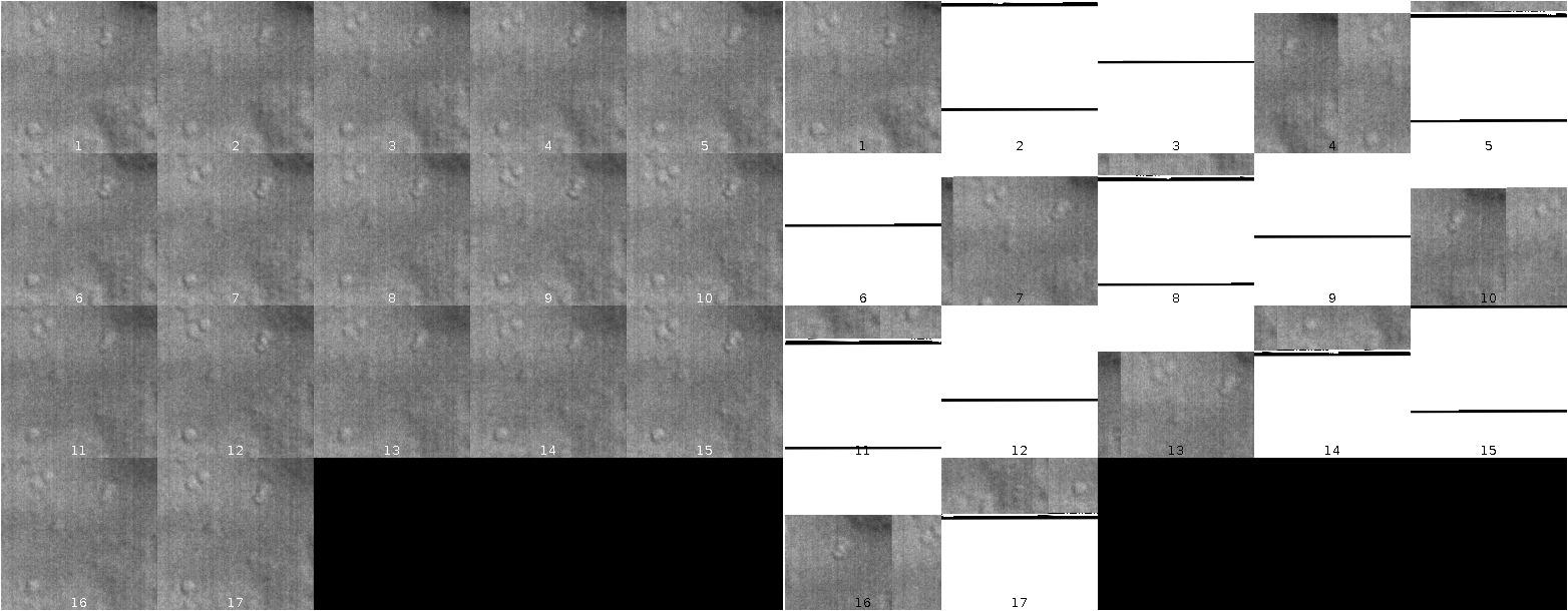 Open Microscopy Environment • View topic -  nd2 ->  tif conversion